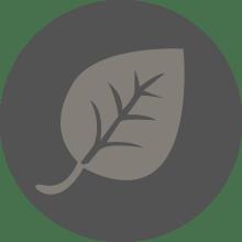 Kaffeebohnen aus einem der besten Anbaugebiete der Welt